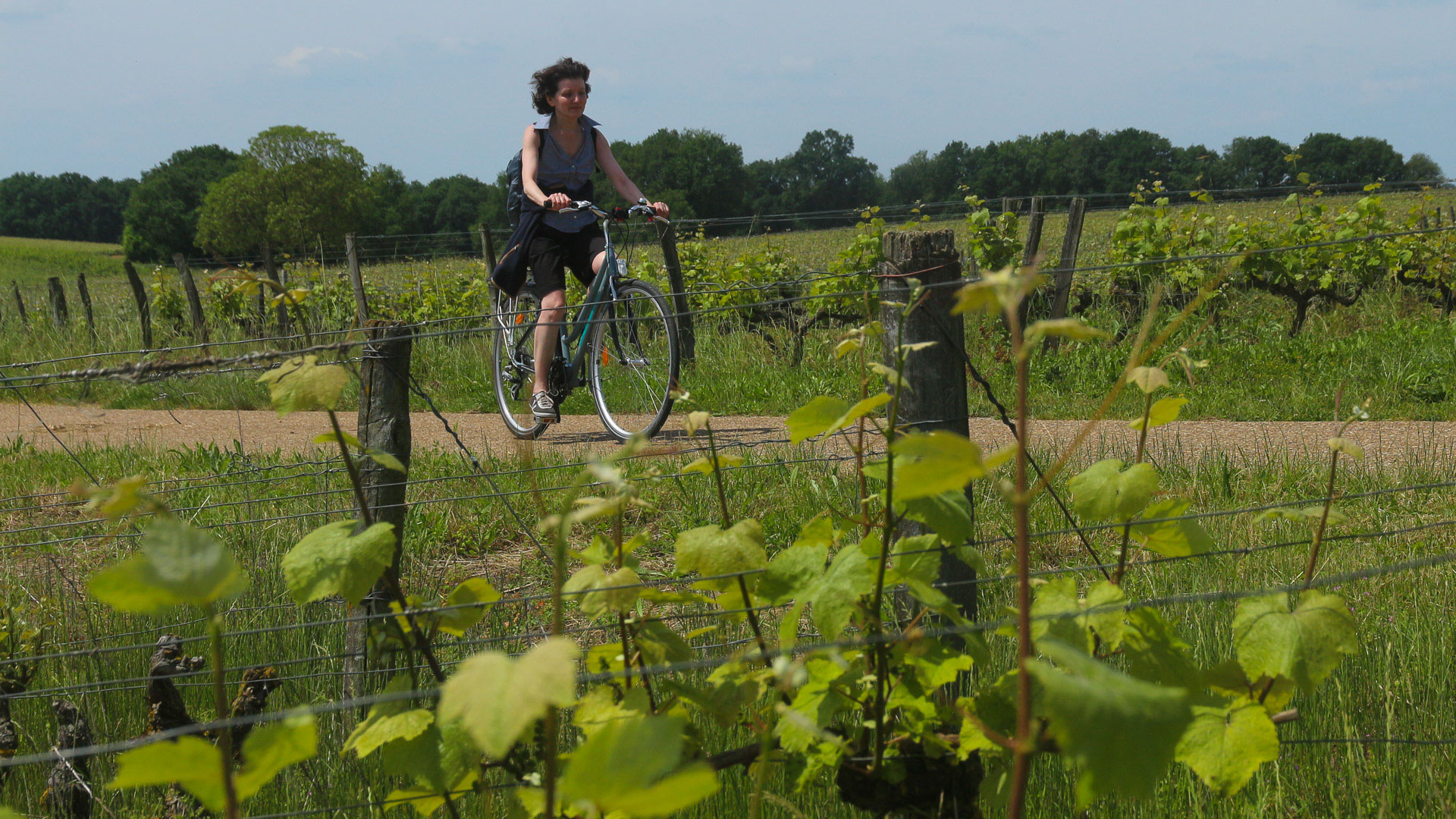 Photo album Cycling the River Loire